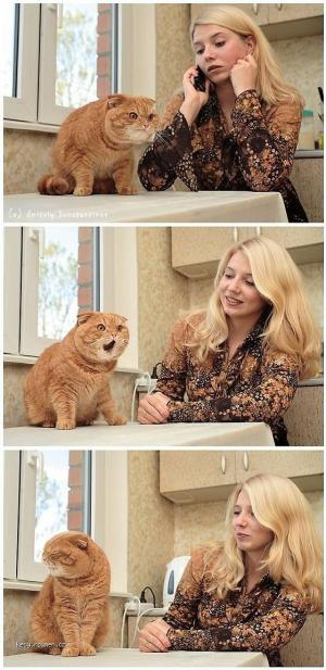 CAT moments  27102011  081340