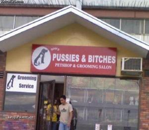 pussies bitches