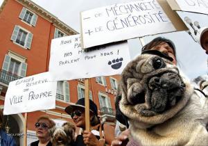 psi demonstrant