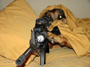 Dogsniper
