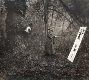 optika stromu