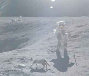 wtf on the moon
