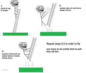 ladder fly