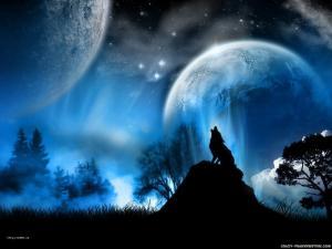 wolfatmoonlightwallpaper