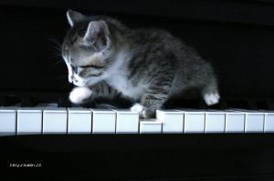 hrac na piano