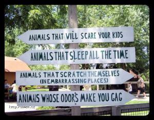 zoo funny 1