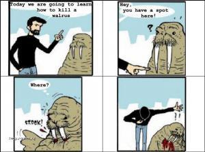 ako zabit mroza