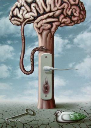 otevrena mysl