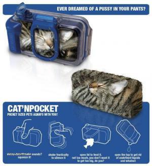 catinpocket