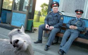 policejni momentka1