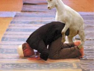 Koza je posvatna