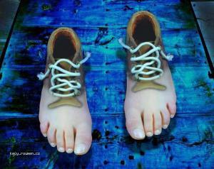 feetshoesvj5