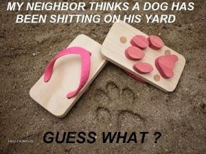 X Neighbors you so silly