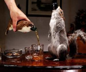 pouzdro na pivo