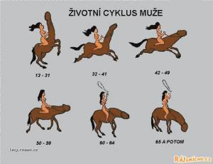 muzsky cyklus