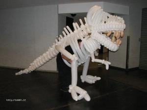 balonkova kostra dinosaura