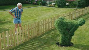 pomsta sousedovi