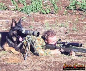 Snipers assistant