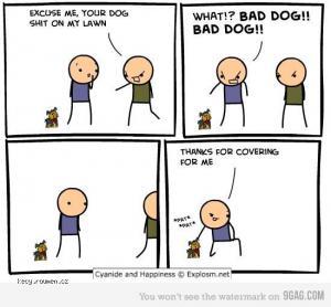 c 26h bad dog