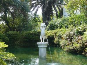kocko fontana