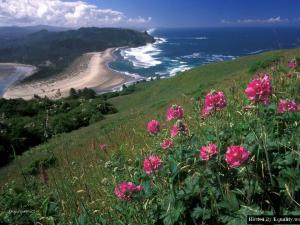 Cascade Head 2C Oregon