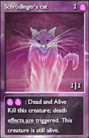 dead and alive cat