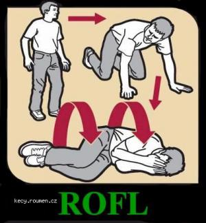 How to ROFL
