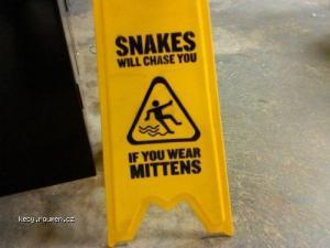 snakesign