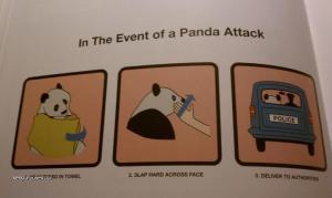 In Case of Panda