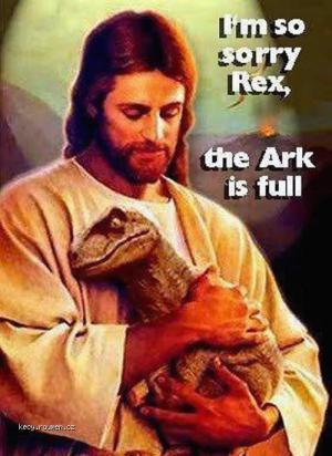 sorry rex