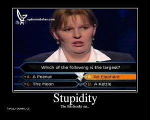 stupidity10