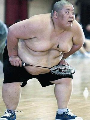sumo a jinej sport