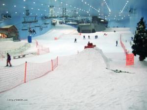 The ski fields of Dubai5