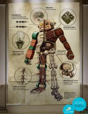 anatomy2010 5B1 5D