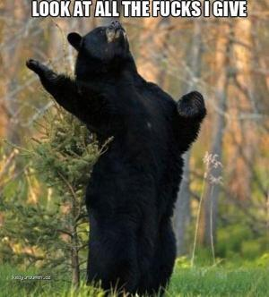 X The Bear