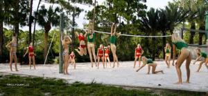 Hot Girl Volleyball Match