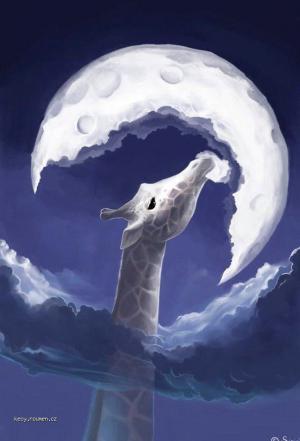 mesic a zirafa