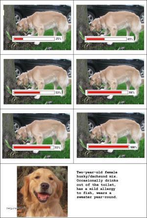 dog sniffing progress bar