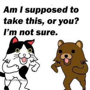 Shotacat and Pedobear