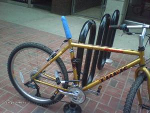 asi damske kolo