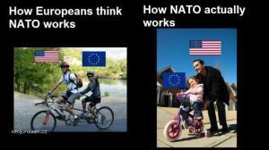 How europeans