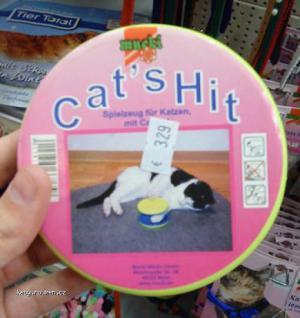 cats hit