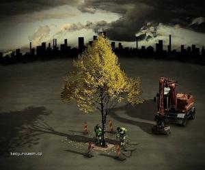 Erik Johannson The last tree