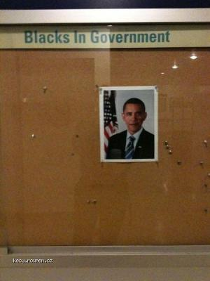 Blacks in Government