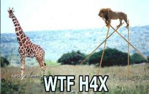 lion hax0r