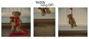teddy hang on