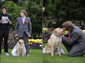 svatba s nejlepsim pritelem