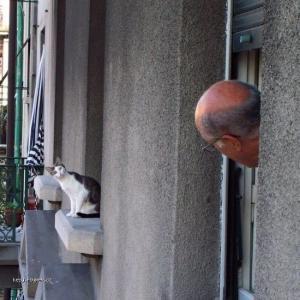 Dobre ranko pan sused