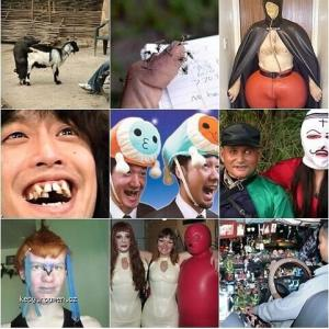 Wtf pictures