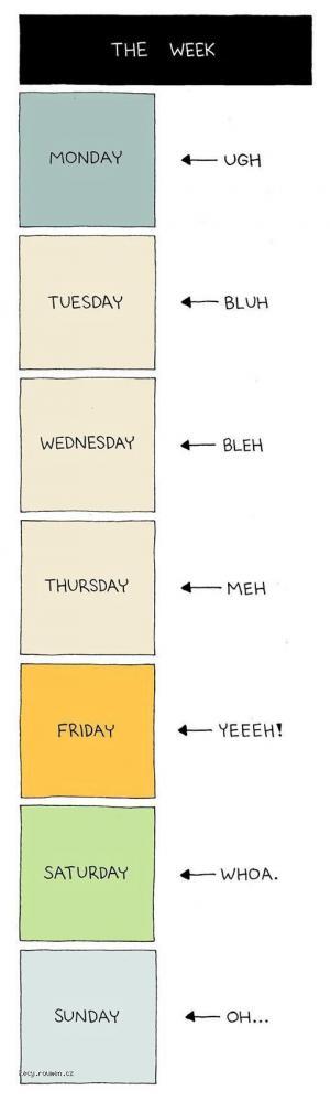 The week 210611